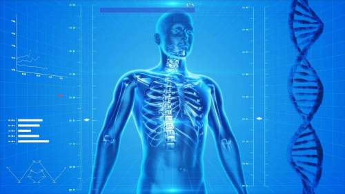 3 Ways to Build Healthy and Strong Bones